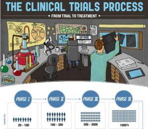 clinical trials process